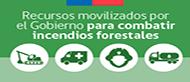 Gobierno toma medidas ante incendios forestales